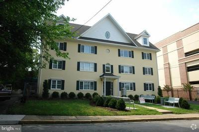 College Park Rental For Rent: 7302 Yale Avenue #100