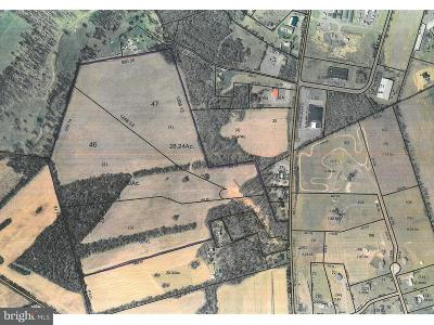 Residential Lots & Land For Sale: Lots 1&2 Holly Pike