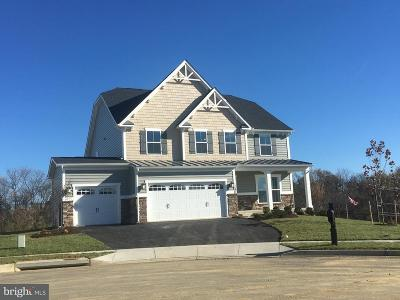 Frederick County Single Family Home For Sale: 405 Potomac View Parkway