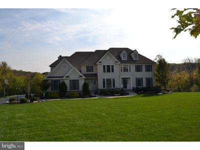 Downingtown Single Family Home For Sale: 34 Cumberland Drive