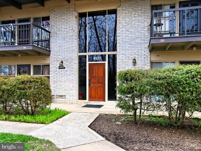 Annandale Single Family Home Under Contract: 4937 Americana Drive #TOP FLOO