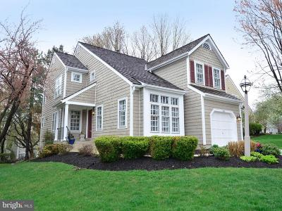 Reston, Herndon Single Family Home For Sale: 1265 Lamplighter Way