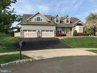 Doylestown Single Family Home For Sale: 6 Burke Circle
