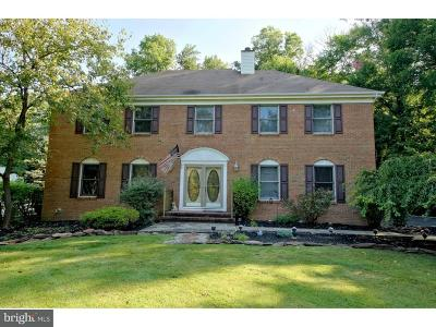 Hopewell Single Family Home For Sale: 46 New Road