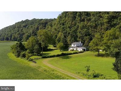 Bucks County Single Family Home For Sale: 31 Uhlerstown Hill Road