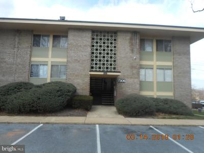 District Heights Rental For Rent: 7306 Donnell Place #B