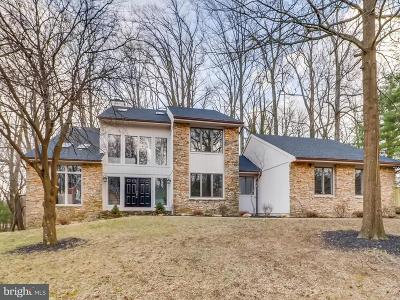 Baltimore Single Family Home For Sale: 3713 Michelle Way