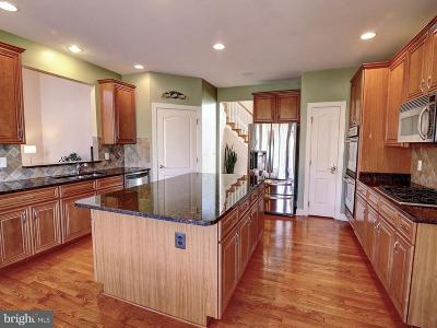 Ashburn Single Family Home For Sale: 20113 Whistling Straits Place
