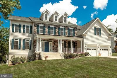 Vienna Single Family Home For Sale: 529 Highland Street NW