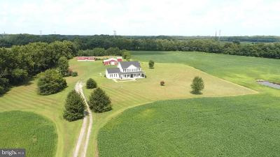 Caroline County Farm For Sale: 25980 Shults Road