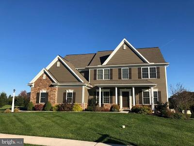 Dauphin County Single Family Home For Sale: 116 Savannah Drive