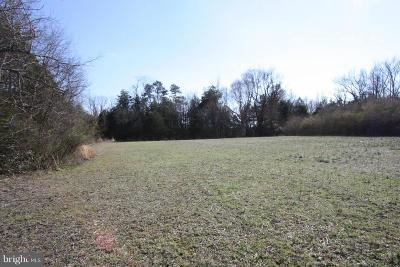 Residential Lots & Land For Sale: Blunts Bridge Road