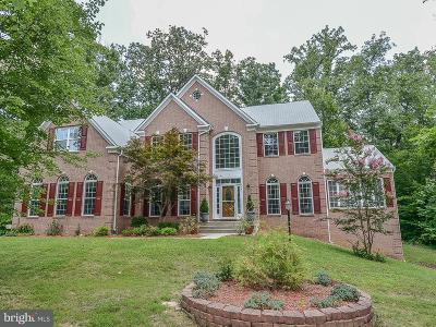 Falls Church Single Family Home For Sale: 6649 Tansey Drive