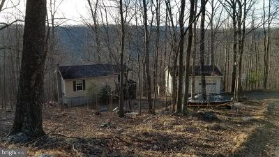 Great Cacapon Single Family Home For Sale: 211 Bear Cub Road