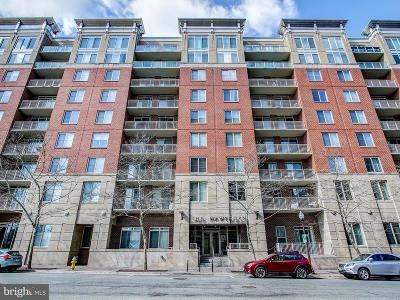 Arlington Condo For Sale: 820 Pollard Street #906