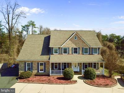 Oakton Single Family Home For Sale: 11254 Waples Mill Road