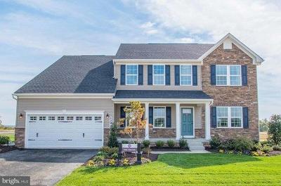 Frederick County Single Family Home For Sale: 507 Martins Creek Drive
