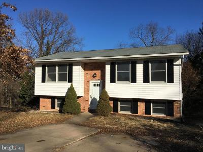 Owings Mills Single Family Home For Sale: 16 Carissa Court