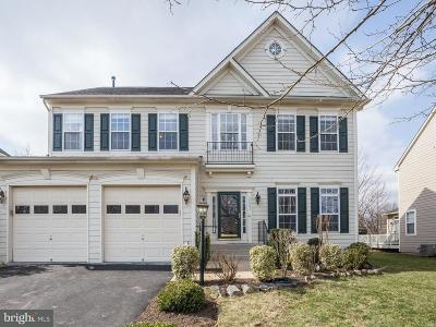 Loudoun County Single Family Home For Sale: 22061 Highview Trail Place