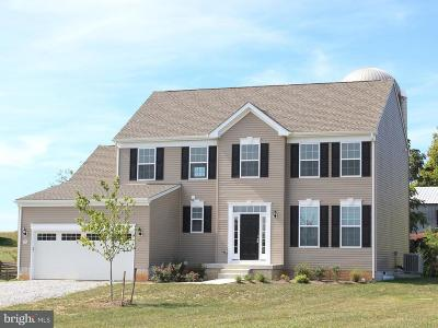 Falling Waters Single Family Home For Sale: 18 Nestle Quarry Road