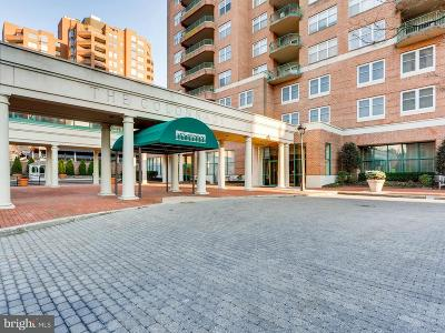 Guilford, Guilford/Jhu Condo For Sale: 3801 Canterbury Road #509