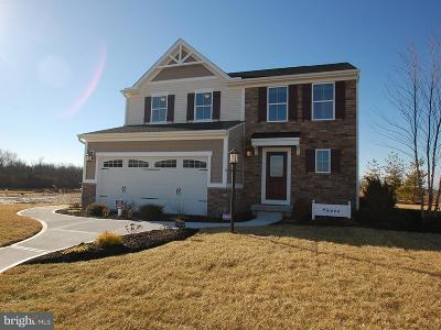 Frederick Single Family Home For Sale: 6510 Madigan Trail
