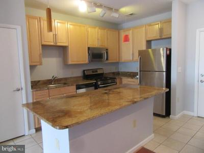 Silver Spring Condo For Sale: 1201 East West Highway #305