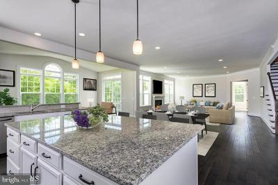 Loudoun County Single Family Home For Sale: Deep Dale Court