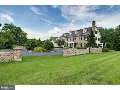 Bucks County Single Family Home For Sale: 1544 River Road