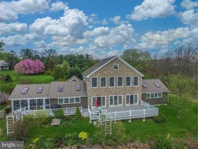 Chalfont Single Family Home For Sale: 91 King Road