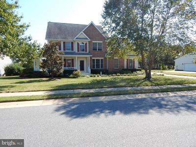 Easton Single Family Home For Sale: 28471 Waterview Drive
