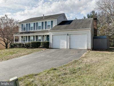 Loudoun County Single Family Home For Sale: 8 Blackbird Court