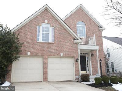 Ashburn Single Family Home For Sale: 20495 Cherrystone Place