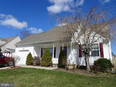 Cecil County Single Family Home For Sale: 7 Apache Place