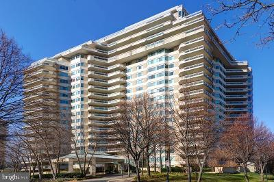 Chevy Chase Condo For Sale: 5600 Wisconsin Avenue #803