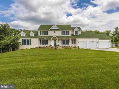 Mount Airy Single Family Home For Sale: 6250 Richie Drive