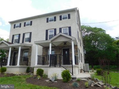 Gilbertsville Single Family Home For Sale: 2504b Swamp Pike