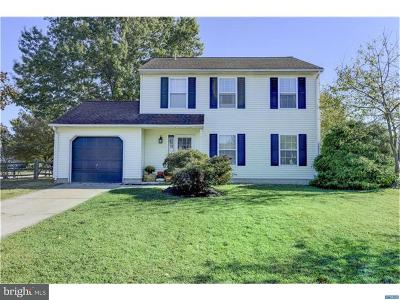 New Castle Single Family Home For Sale: 201 Romeo Drive