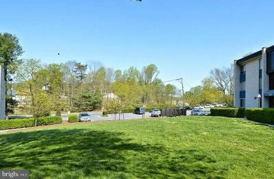 Rockville Condo For Sale: 2511 Baltimore Road #4