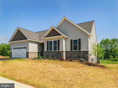 Oxford Single Family Home For Sale: 220 Ashleys Way