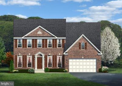 Manassas Single Family Home For Sale: Hoadly Manor Drive