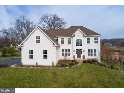 Downingtown Single Family Home For Sale: 136 Randolph Drive