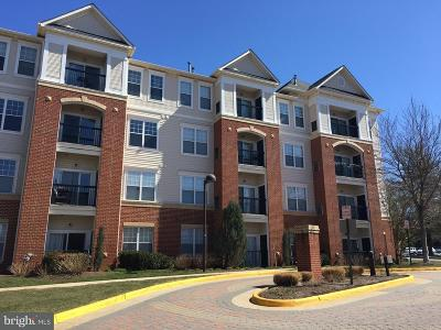 Fairfax Condo For Sale: 3851 Aristotle Court #1-107