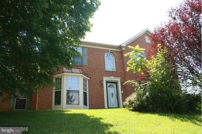 Boonsboro Single Family Home For Sale: 6814 King Road