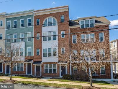 Gaithersburg Single Family Home For Sale: 246 Summit Avenue N #19