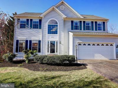 Ashburn Single Family Home For Sale: 20927 Gardengate Circle