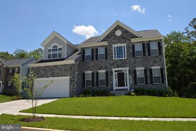 Accokeek Single Family Home For Sale: 17101 Gaddy Lane