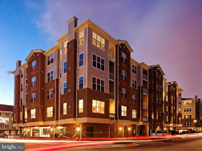 Herndon Condo For Sale: 1372 Neil Armstrong Avenue #18304