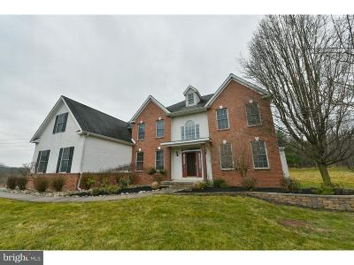 Collegeville Single Family Home For Sale: 1781 Hawks Nest Drive