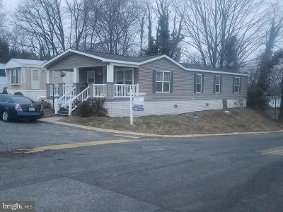 Capitol Heights Single Family Home For Sale: 9412 Firtree Park Street